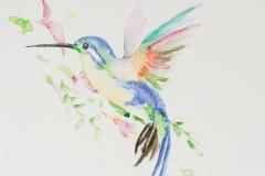 056 - Kolibri