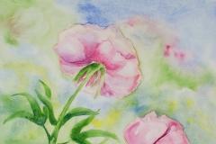 013 - Fleur