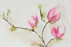 051 - Magnolia 2