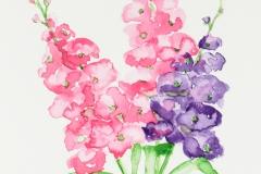 060 - Rose Paars