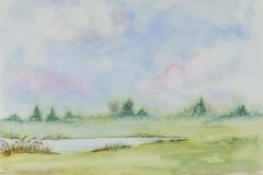 089 - Landschap