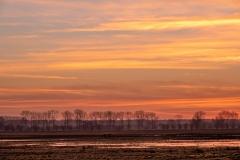 Binnenveldse Hooilanden, Wageningen