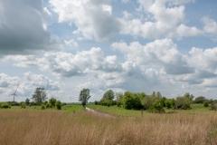 Kollummerwaard, Friesland